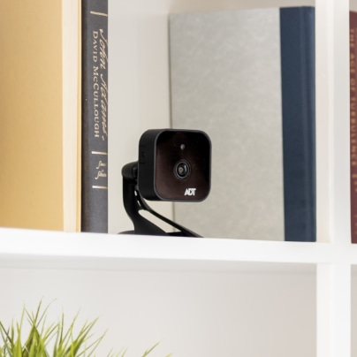 Oceanside indoor security camera
